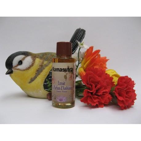 Extrait de parfum d'ambiance KAMASUTRA