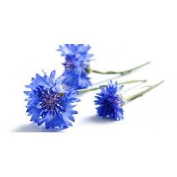 Eau florale de bleuet Bio